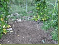 garden round 2 13