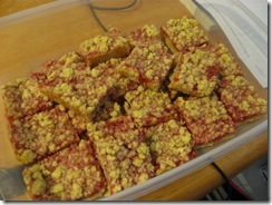 raspberry oat bars 01