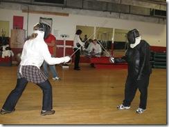 fencing 06