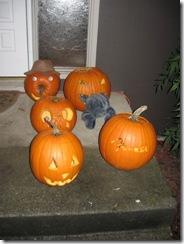 pumpkins 18