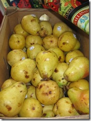 pears 01