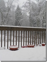 snow day 18