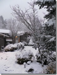 snow day 22