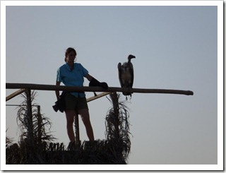 20110324 [P1010990] - Birds of Prey