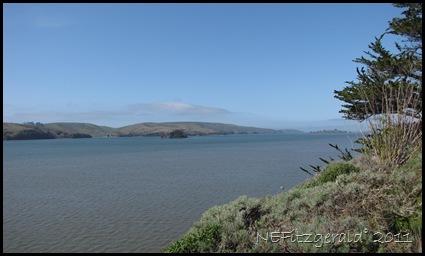 IMG_5752ViewTo SalinianBlock_ PointReyes Peninsula_Across TomalesBay_SAF