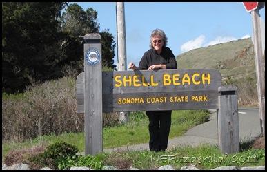 IMG_5761 Shell_Beach