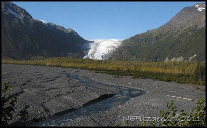 IMG_4120 ExitGlacier KenaiFjordsNP
