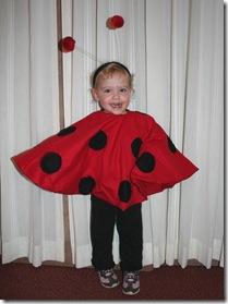 IMG_0036 G ladybug