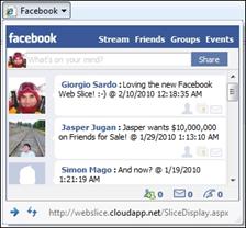facebookwebslice