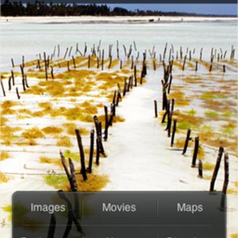 Bing llegó al iPhone