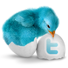bluebird_256x256