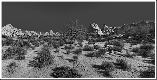 Panorama Joshua Tree National Park
