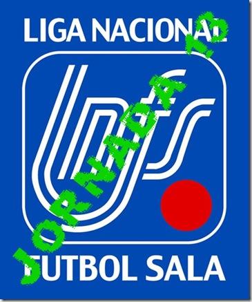 logo LNFS13