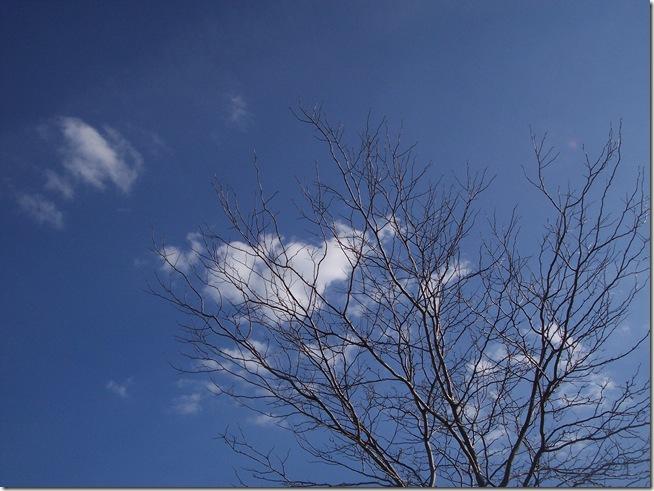 outdoor 053