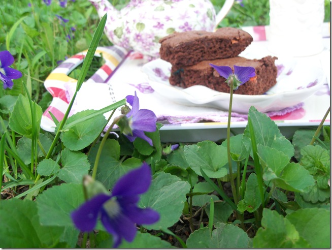 tea among the violets 015