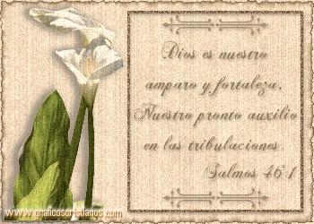pic_2005-05-16_013149