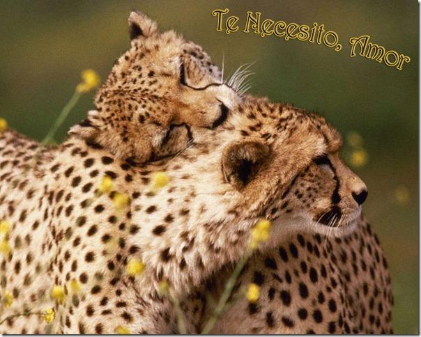 postales-romanticas-1