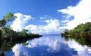 Nubes y selva
