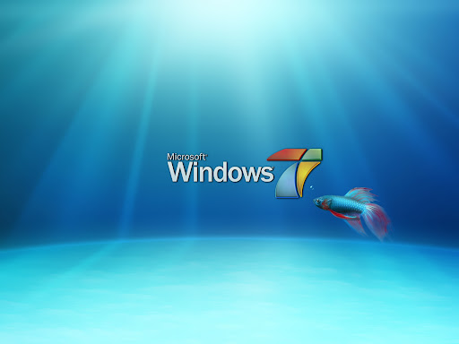 Underwater with a fish. windows 7 wallpaper