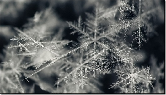 A macro shot of fresh snow falling, taken by the Canon EF 100mm f.28