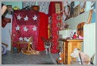 ΚΑΝΑΡΕΙΑ 2010 ΔΗΜΟΣ ΕΡΕΤΡΙΑΣ 008