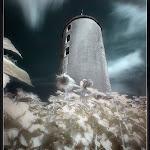infraredphotography12.jpg