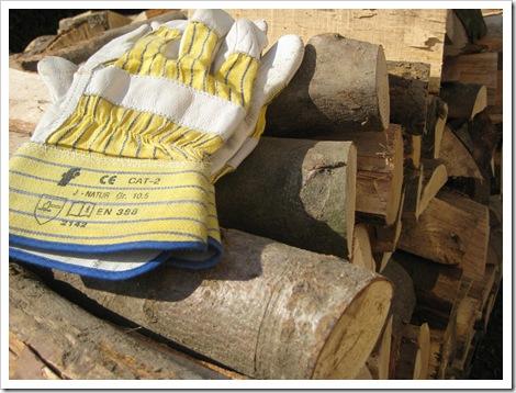 Holz vor der Hütte (2)