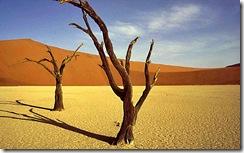 Namibia-Sossusvlei