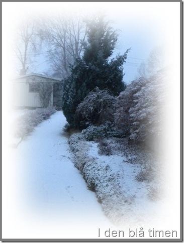 første snøen 001-tile