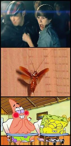 justinbieber medinho Justin Bieber tem medo de barata