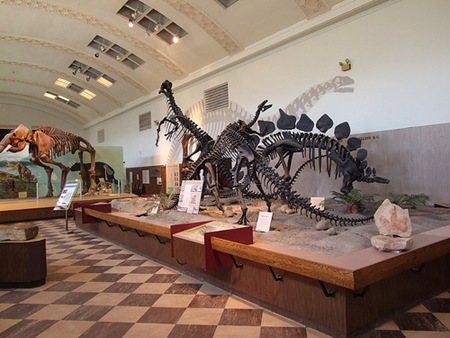 Utah Museum of Natural History Dinosaur Exhibit