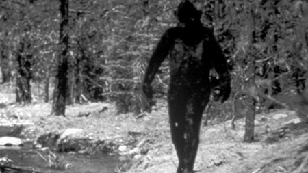 Bigfoot Missing Link or Dark Hair