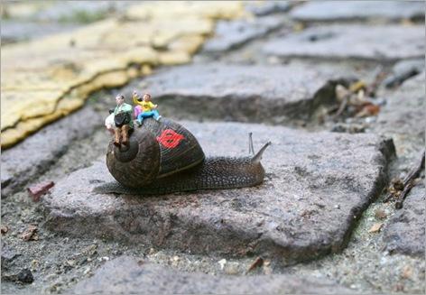 snail gaffiti
