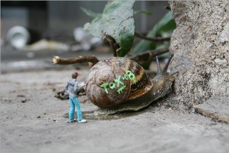 snail gaffiti 02