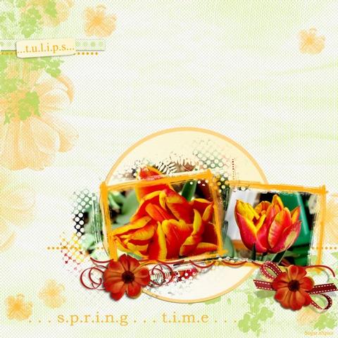 SnS-Tulips