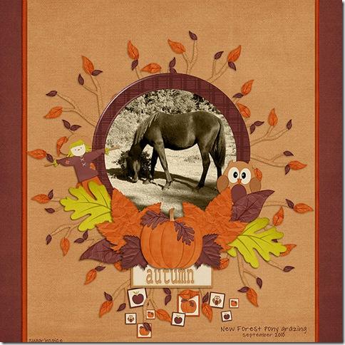 SnS-AutumnPony