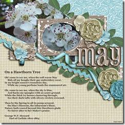 SnS-May
