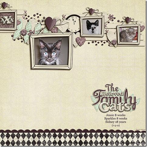 663 SnS-FamilyCats1