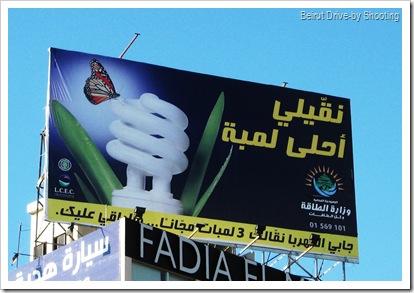 bulb (2)