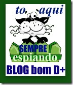 blogbomdemais