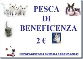 PESCA_DI_BNEFICENZA_thumb[4]