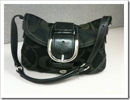 purse 5