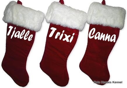 luxury-velvet-christmas-stocking.JPG