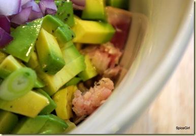 5-22-09095 tuna salad not tossed-1