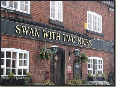 The Swan with Two Nicks in a snow storm
