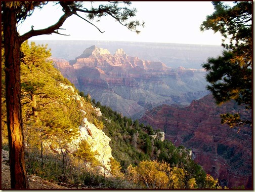 The Grand Canyon, from the North Rim