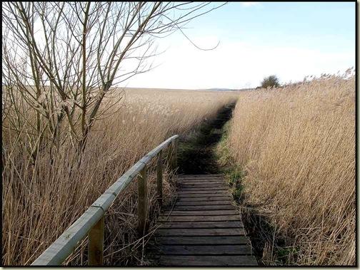 The shore path to Neston Old Quay
