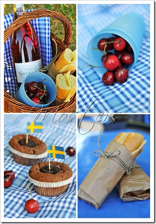 picnic-nationaldagen_7328658