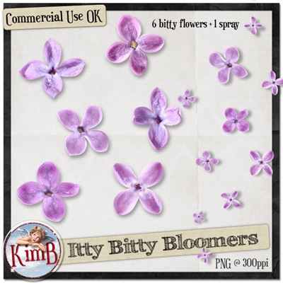 kb-ittybittybloomers