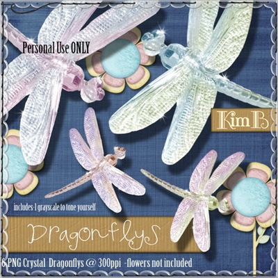kb-dragonflies